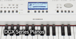DGX Series Pianos - Click here