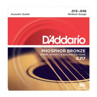 EJ17 Phosphor Bronze Medium Acoustic Strings