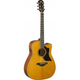 A3M ARE Electro-Acoustic Guitar