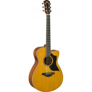 AC5M ARE Electro-Acoustic Guitar