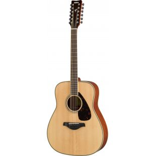 FG820-12 12-String Acoustic Guitar