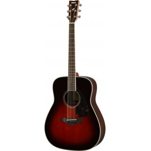 FG830 Acoustic Guitar