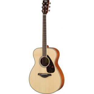 FS820 Acoustic guitar