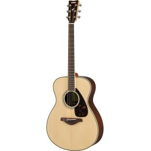 FS830NT  Acoustic guitar