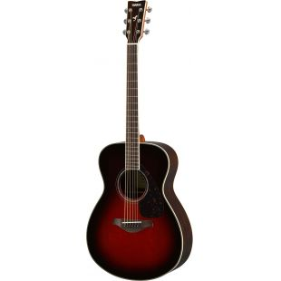 FS830TBS Acoustic guitar