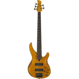 TRBX605FM 5-String Electric Bass Guitar In Matte Amber Finish