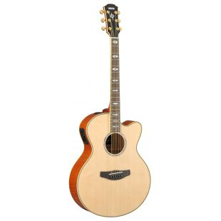CPX1000 Electro-Acoustic Guitar