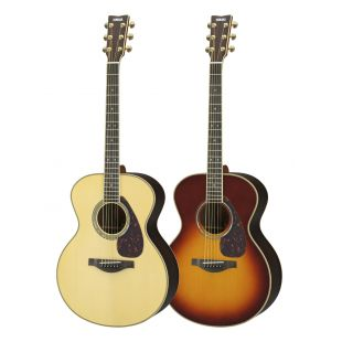 LJ16 ARE Acoustic Guitar