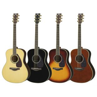 LL6 ARE Acoustic Guitar