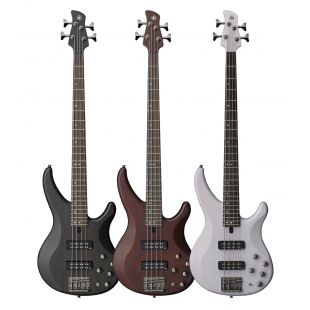 TRBX504 Electric 4-String Bass Guitar