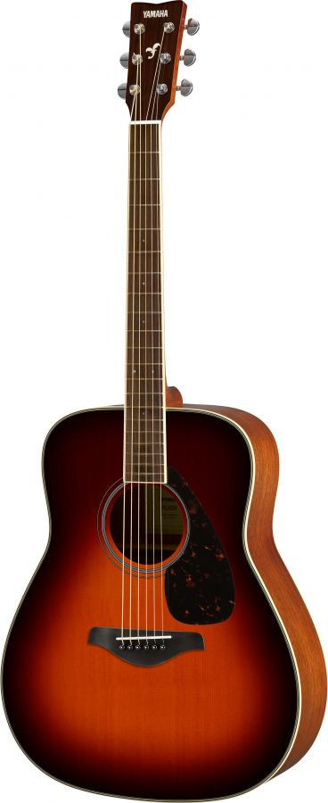 FG820 Acoustic Guitar