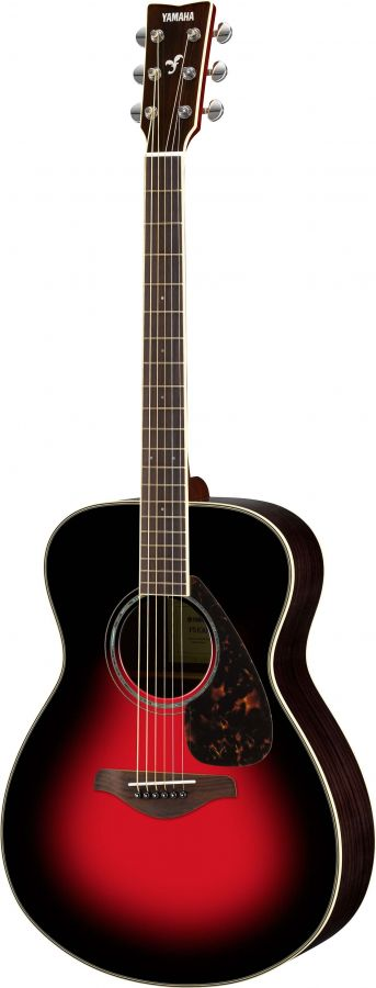 FS830 Acoustic Guitar