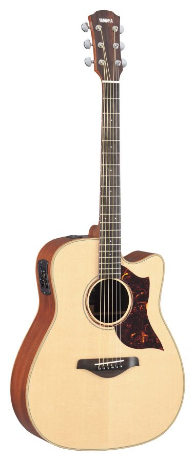 A3M Electro-Acoustic Guitar with Hard Case