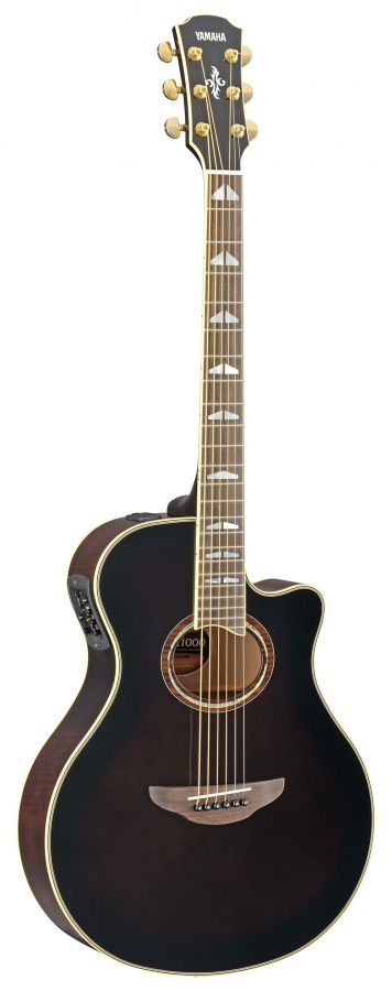 APX1000 Electro-Acoustic Guitar