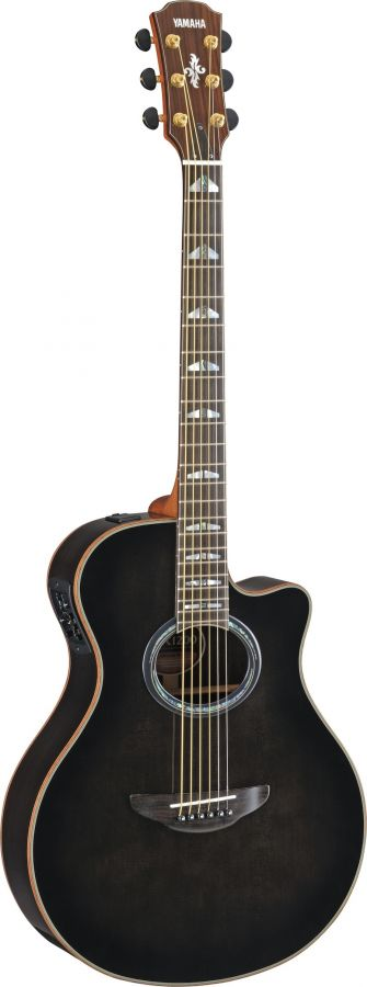 APX1200 Electro Acoustic Guitar
