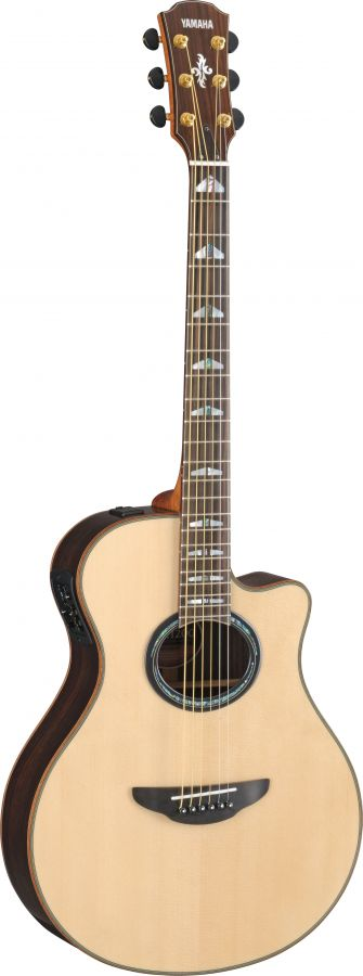 APX1200II Electro-Acoustic Guitar