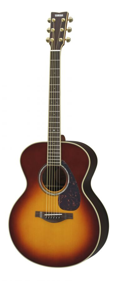 LJ6 ARE Acoustic Guitar