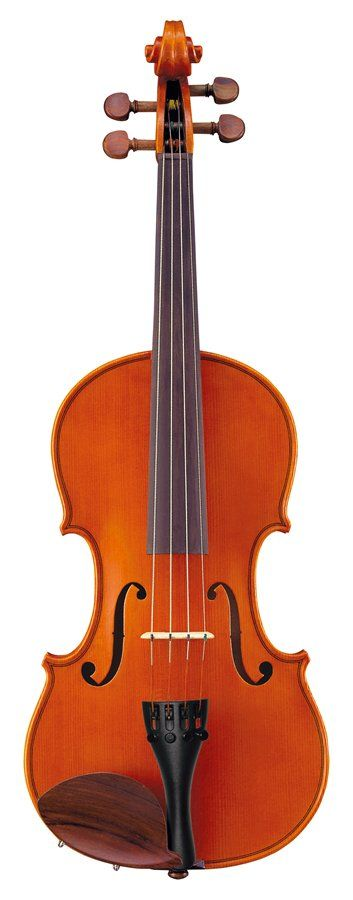 V5SC Full Size (4/4) Violin Outfit