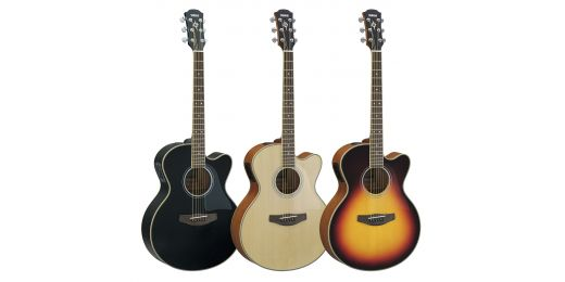 Electro-Acoustic Guitars