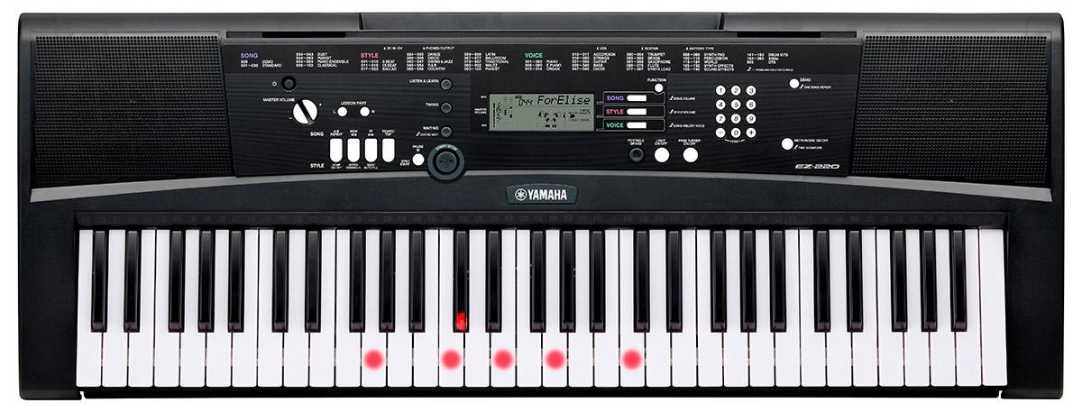 Yamaha EZ-220 Portable Keyboard with Light-Up Keys 61-key ...