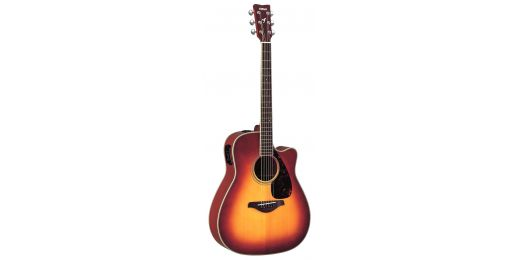 FGX-Series Electro-Acoustic Guitars