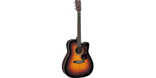 FX-Series Electro-Acoustic Guitars