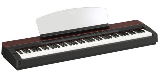 Portable Digital Pianos