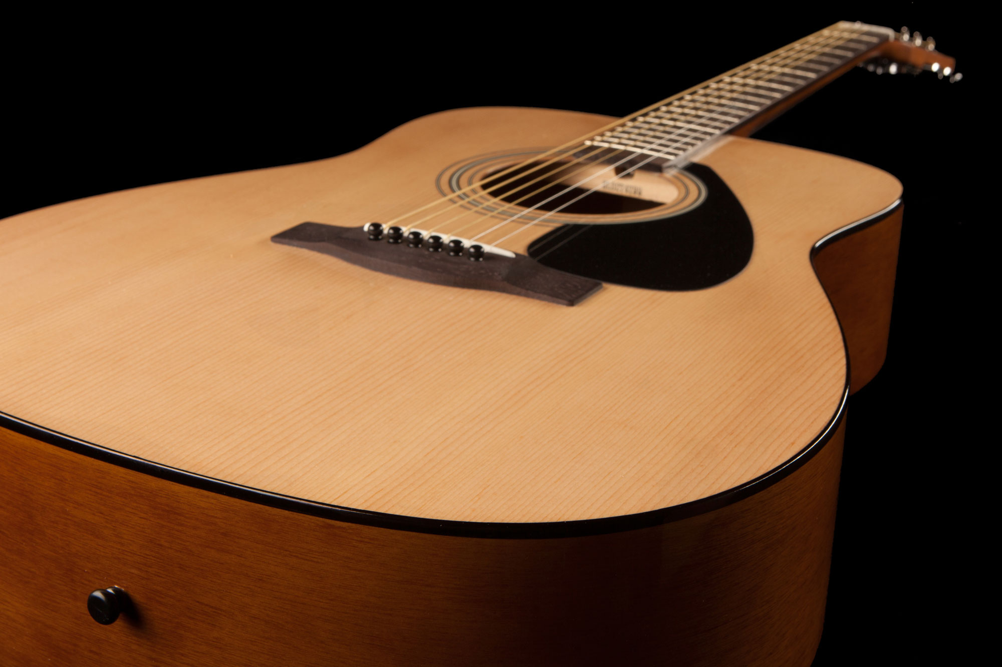 F310 Acoustic Guitar in Natural finish